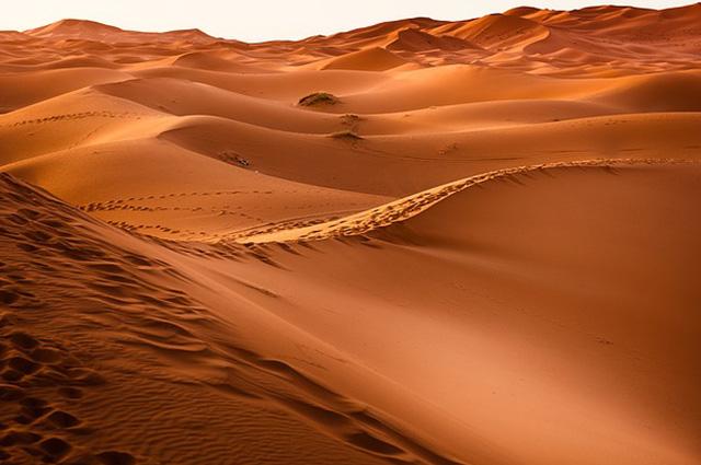 A principal característica de um deserto é a aridez, ou seja, a escassez dos índices de chuvas