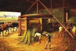 Economia colonial do Brasil – Açúcar, ouro e escravidão