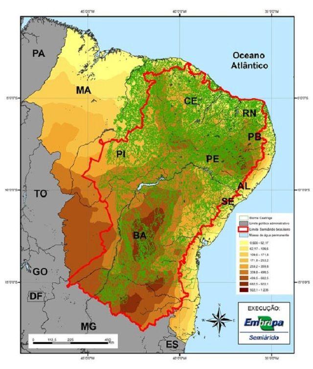 Caatinga - Fauna, flora e outras características - Semiárido brasileiro