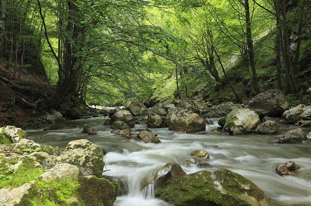 Ciclo Da água Na Natureza Estudo Prático