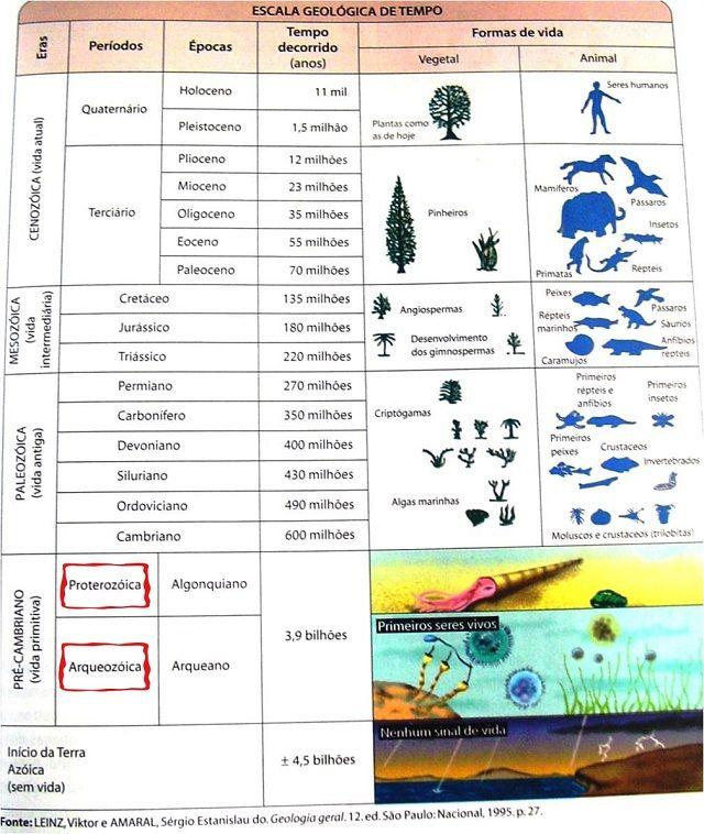 Estrutura geológica do Brasil - Tabela Geológica