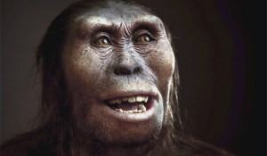 australopithecus-ancestral-humano