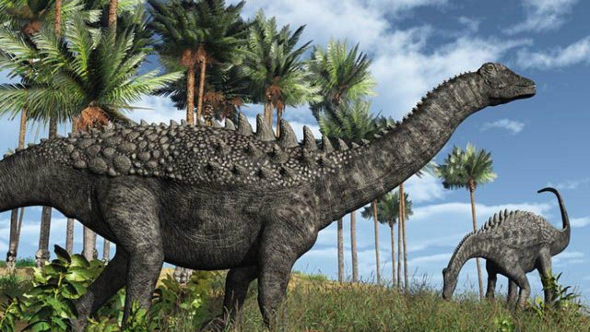 Historia E Imagens Dos Dinossauros Estudo Pratico
