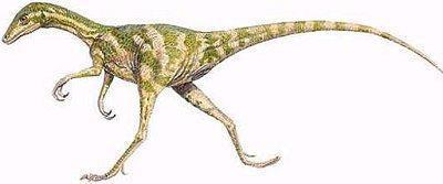 Dinossauro Compsognatos