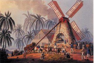 Ciclo da cana-de-açúcar no Brasil colônia