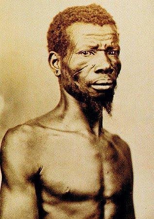 Lei dos Sexagenários - História dos escravos no Brasil