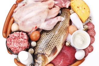 Proteínas – Função e digestão