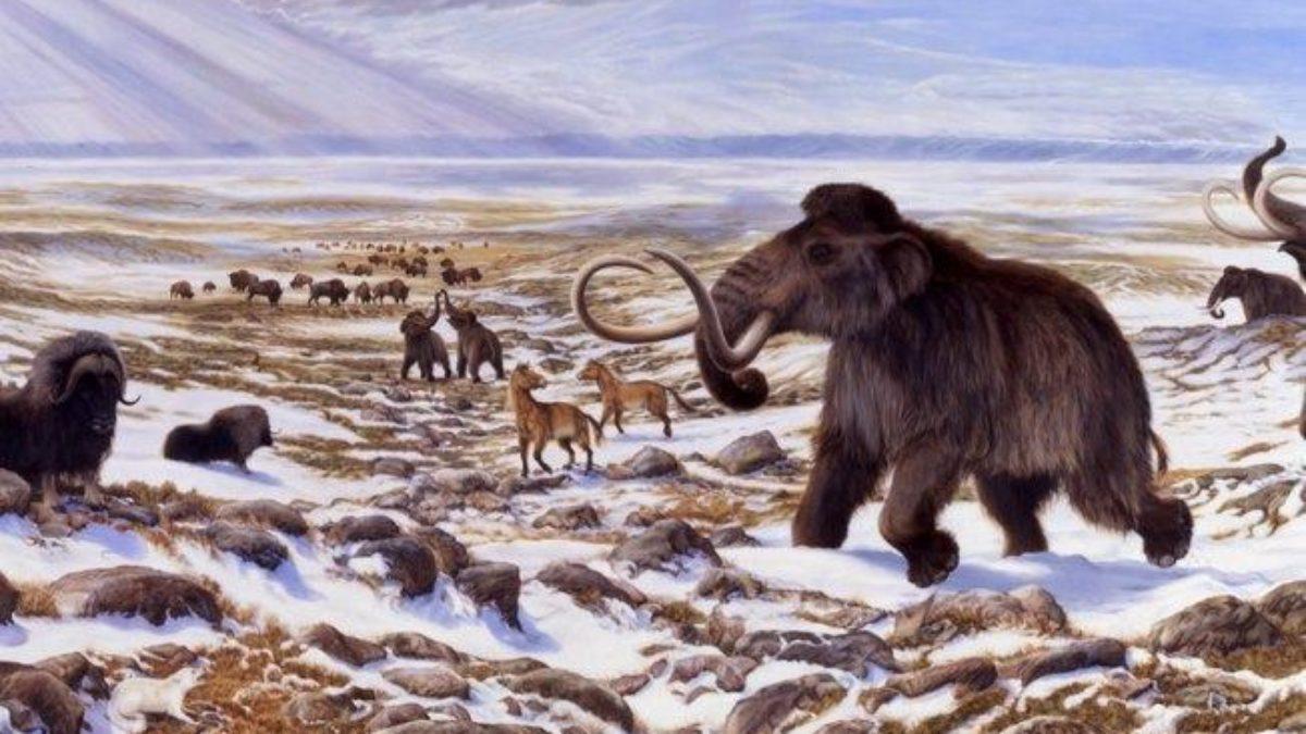 Era glacial - Pré-História - Estudo Prático
