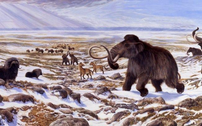 Era glacial - Pré-História - Animais