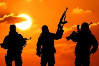 Guerrilha e terrorismo
