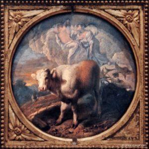 Io, a Vaca