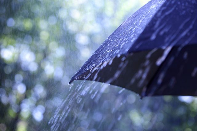 Clima subtropical - Chuvas