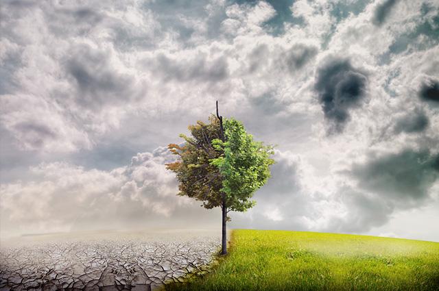 Para denominar um clima de um local são necessários cerca de trinta anos de pesquisas e observações