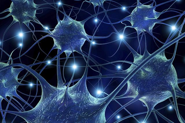 No tecido nervoso praticamente não existe substância intercelular