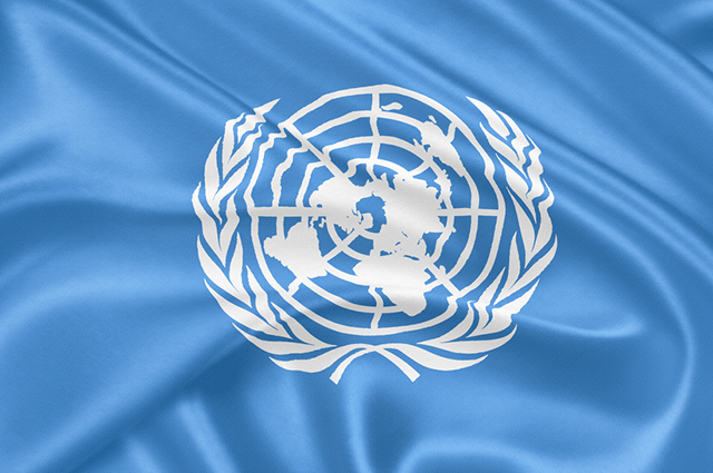 A ONU é uma organização internacional que visa o desenvolvimento econômico e o progresso social das nações