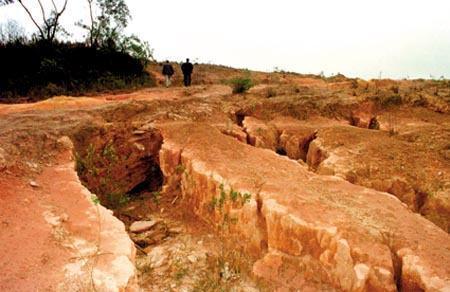 Degradação do solo - O que é e os problemas do mau uso do solo