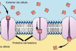Difusão molecular