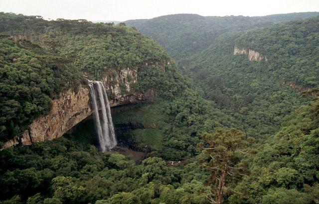 Cachoeira, Reserva Biológica da Canela Preta