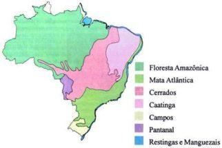 Ecossistemas brasileiros