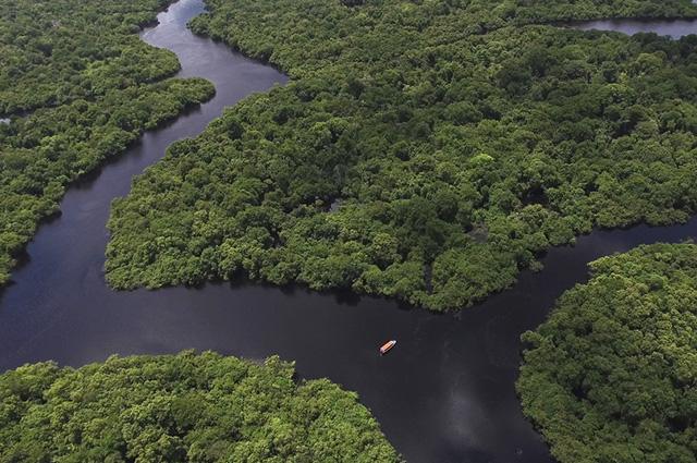 A Floresta Amazônica é a maior floresta tropical existente no mundo