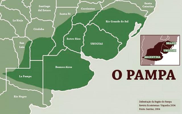 Os Pampas do sul-americanos são eventualmente tratados como Estepes