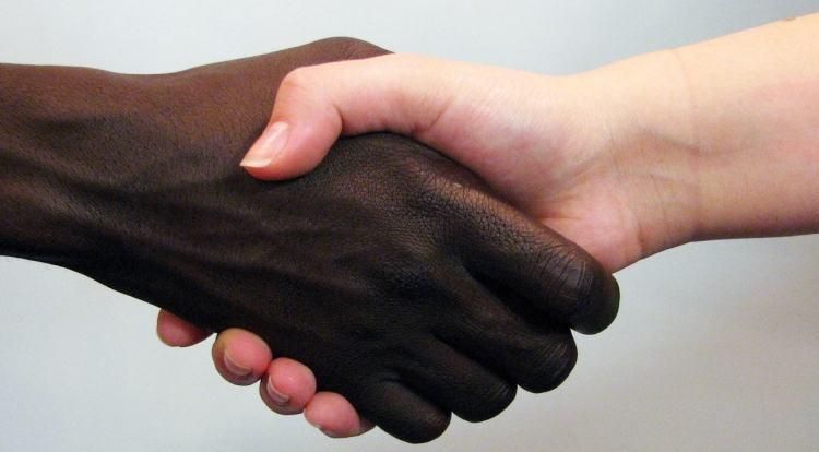 Questão racial no Brasil