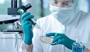bacteriologia-historia-tipos-de-bacterias-e-doencas-comuns