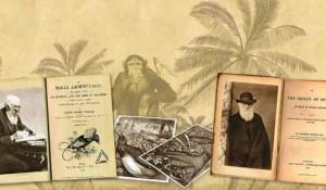 darwinismo-os-conceitos-de-evolucao-de-darwin
