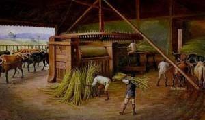 economia-acucareira-antecedentes-historicos-exploracao-do-acucar-e-queda