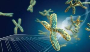 doencas-geneticas-e-hereditarias