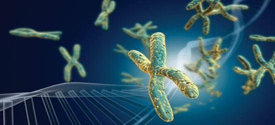 Doenças genéticas e hereditárias