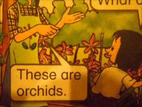 Pronomes demonstrativos em inglês