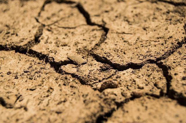 Formação dos solos ocorre através dos intemperismos físicos e químicos