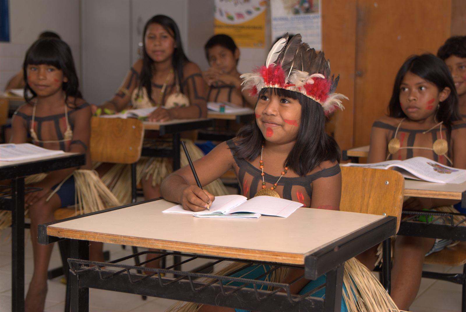 MEC busca representantes para comissão de educação indígena ...