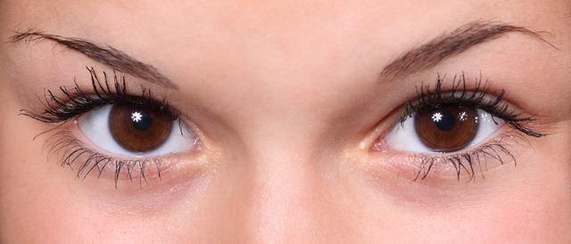 O olho humano - Características e funcionamento