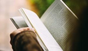 resumo-do-livro-antologia-poetica