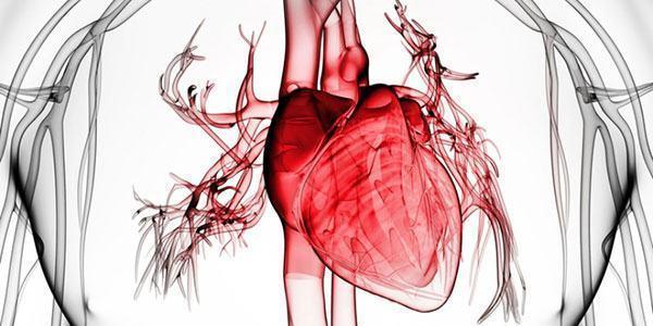 Choque circulatório - Tipos e sintomas