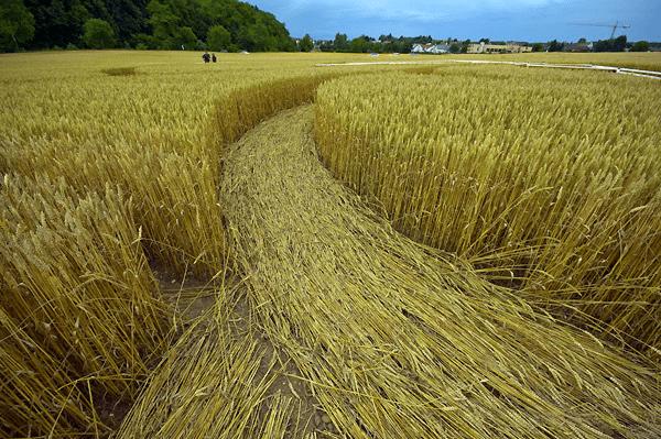 Imagem aproximada do cículo