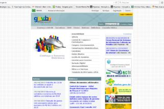 Governo eletrônico: a divulgação online dos serviços e programas públicos