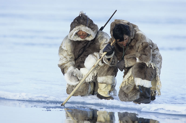 Os esquimós: grupos étnicos que vivem no Ártico