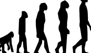o-criacionismo-e-o-evolucionismo-saiba-mais-sobre-essas-teorias