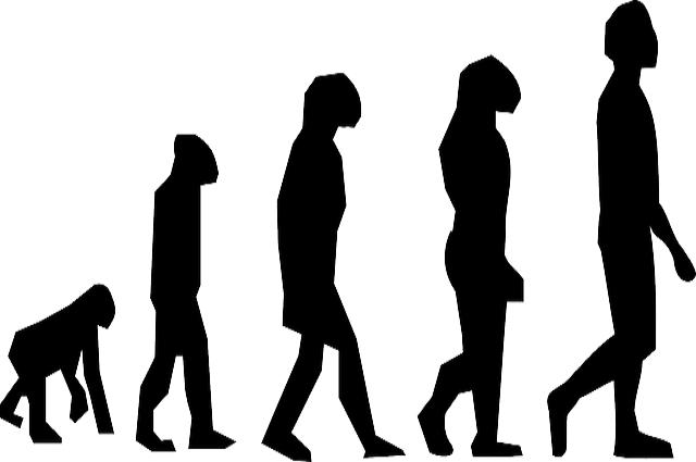 O criacionismo e o Evolucionismo. Saiba mais sobre essas teorias.