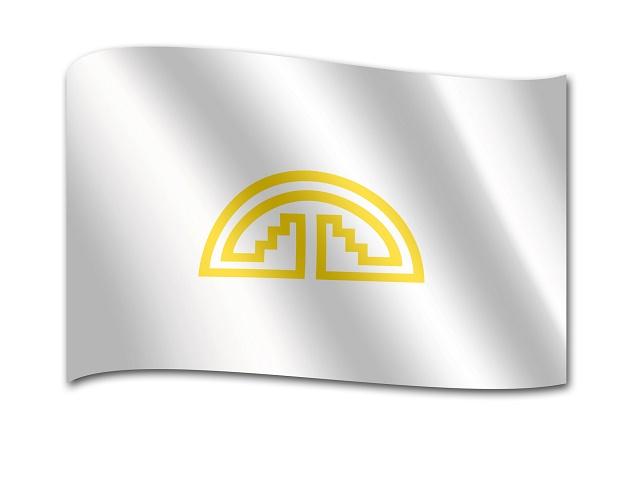Bandeira da Comunidade Andina