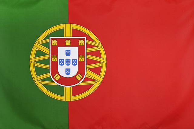 Resultado de imagem para bandeira de portugal