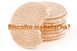 Nomenclatura: o correto é biscoito ou bolacha?