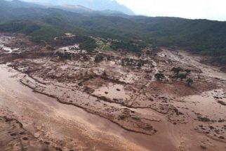 Conheça os maiores desastres ambientais do Brasil