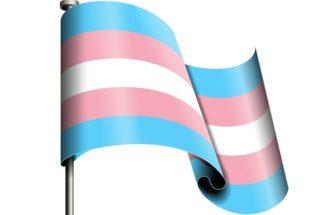 Transfobia: um assunto a se debater em sociedade