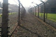 Saiba mais sobre o Holocausto e suas marcas na história