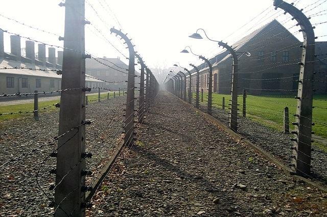 Saiba mais sobre o Holocausto