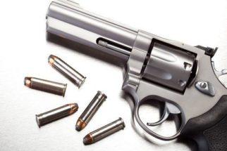 Assuntos relacionados ao porte de armas que podem cair no Enem